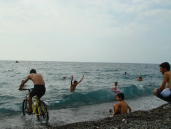 سواحل پوتی