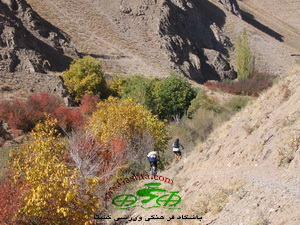 off road mountain biking in Ahar