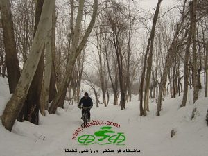 sohanak83-11-30-012