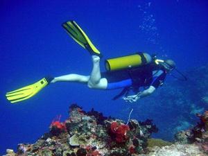 2alanya diving