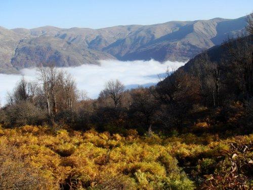 طبیعت پاییزی ارفع کوه