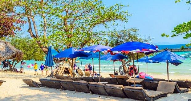 پایایا سواحل تایلند